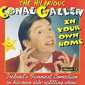 In Your Own Home by Conal Gallen