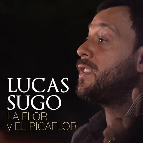 La Flor y el Picaflor de Lucas Sugo