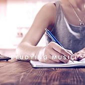 Play & Download Studying Music by Various Artists | Napster