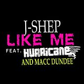 Like Me by J Shep