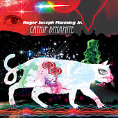 Play & Download Catnip Dynamite by Roger Joseph Manning, Jr. | Napster