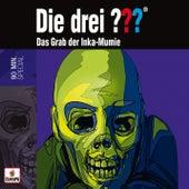 Das Grab der Inka-Mumie von Die Drei ???