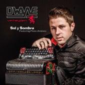 Sol y Sombra (Featuring Flaco Jiménez) by Dwayne Verheyden