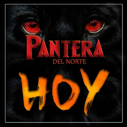 Play & Download Hoy by Pantera Del Norte | Napster