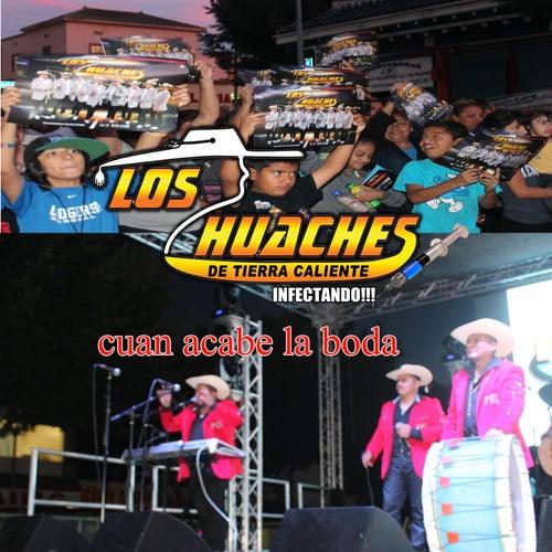 Cuando Acabe la Boda by Los Huaches De Tierra Caliente