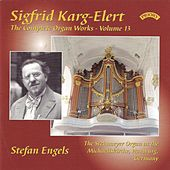 Karg-Elert: Complete Organ Works, Vol. 13 by Stefan Engels