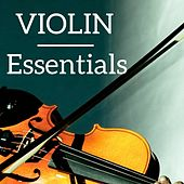 Play & Download Violin Essentials by Various Artists | Napster