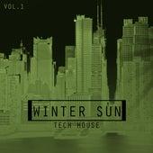 Winter Sun Tech House, Vol. 1 by Various Artists