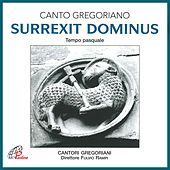 Play & Download Surrexit dominus (Canto gregoriano) by Fulvio Rampi Cantori Gregoriani | Napster
