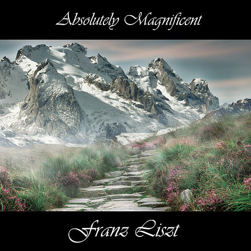 Play & Download Absolutely Magnificent Franz Liszt by Franz Liszt | Napster