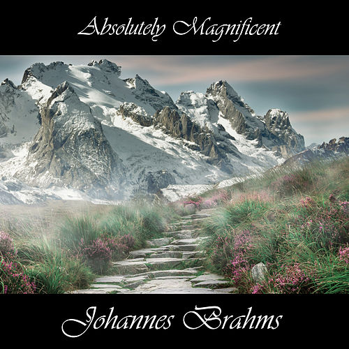 Play & Download Absolutely Magnificent Johannes Brahms by Johannes Brahms | Napster