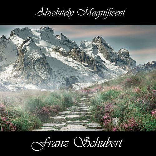 Play & Download Absolutely Magnificent Franz Schubert by Franz Schubert | Napster