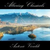 Classically Beautiful Antonio Vivaldi by Anastasi