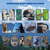 Highland Voices by Various Artists