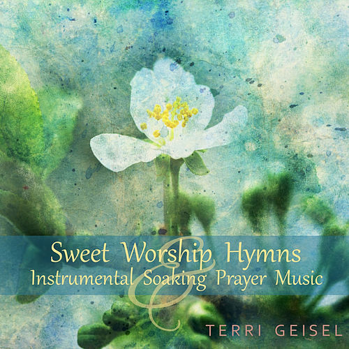 Sweet Worship Hymns, Instrumental Soaking Prayer Music by Terri Geisel