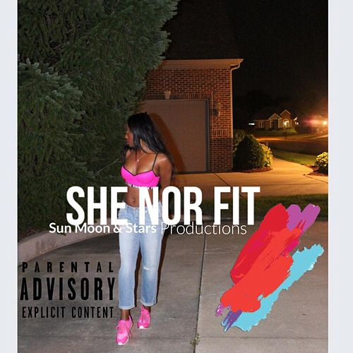 She nor Fit by Audion