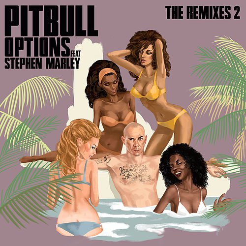 Options (The Remixes 2) di Pitbull