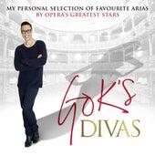 Gok's Divas von Various Artists