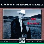 Mil Botellas by Larry Hernández