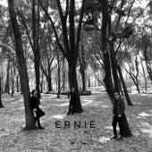 A.O.M by Ernie (Tech-House)