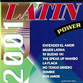 Latin Power 2001 von Various Artists