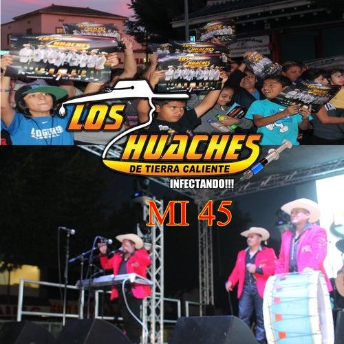 Mi 45 (En Vivo) by Los Huaches De Tierra Caliente