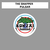 Pulsar by Snapper