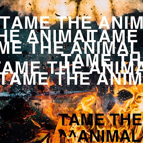 Tame the Animal by Besides Daniel