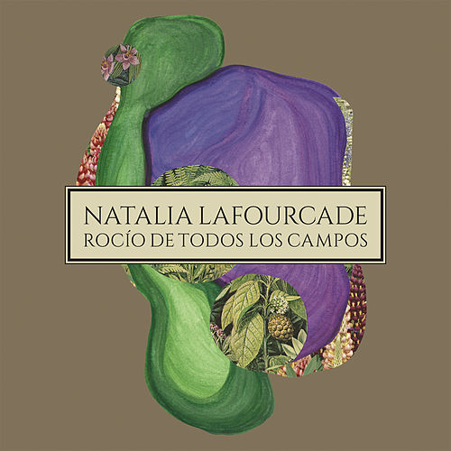 Play & Download Rocío de Todos los Campos by Natalia Lafourcade | Napster