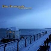 Blue Promenade by Stephen Dunwoody