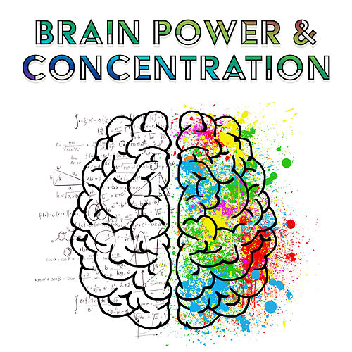 Brain Power & Concentration – Best Classical Music for Study, Stress Relief, Focus, Better Memory, Bach, Mozart de Konzentration Musikexperten