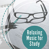 Relaxing Music for Study – Bach, Mozart to Work, Easy Learning, Focus, Clear Mind, Studying Music by Studying Music