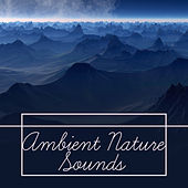 Ambient Nature Sounds – Soft Music for Relaxation, Delicate Rain, Pure Waves, Stress Free, Pure Sleep, Soothing Sounds by Deep Sleep Relaxation