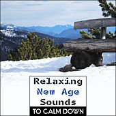 Relaxing New Age Sounds to Calm Down – New Age Relaxation, Inner Harmony, Stress Relief, Soft Music by Sounds of Nature Relaxation