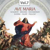 Ave Maria (Praise of the Virgin Mary Through the Centuries), Vol. 7 by Various Artists