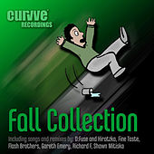 Play & Download Fall Collection by Various Artists | Napster