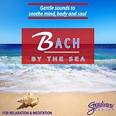 Bach by the Sea by Simon Wynberg