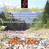 Nöis Läbe by Various Artists