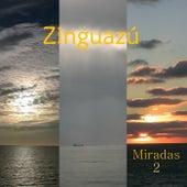 Miradas 2 de Zinguazú