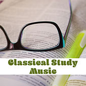 Play & Download Classical Study Music – Ambient Piano, Music for Learning, Classical Piano by Classical Study Music Peaceful Piano | Napster