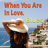 When You Are In Love. Blues von Various Artists