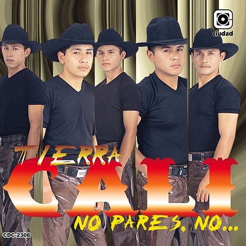 Play & Download No Pares, No... (Los Creadores del Sacadito) by Tierra Cali | Napster