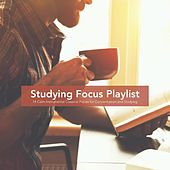 Studying Focus Playlist: 14 Calm Instrumental Classical Pieces for Concentration and Studying by Various Artists