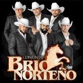 Adios Amor by Conjunto Brio Norteño