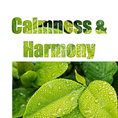 Calmness & Harmony – Pure Relaxation, Peaceful Mind, Nature Sounds for Relaxation, Soothing Waves, Deep Sleep, Zen by New Age