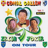 The Irish Joker by Conal Gallen