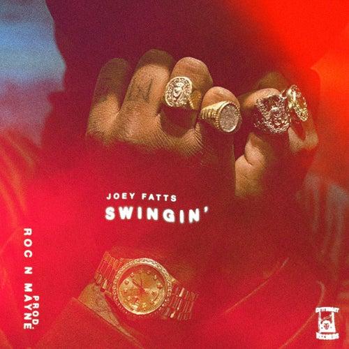 Swingin' by Joey Fatts