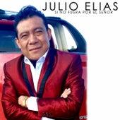 Si no fuera por el señor by Julio Elias