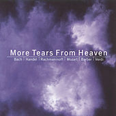 Play & Download More Tears From Heaven by Various Artists | Napster