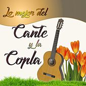 Play & Download Lo Mejor del Cante y la Copla by Various Artists | Napster